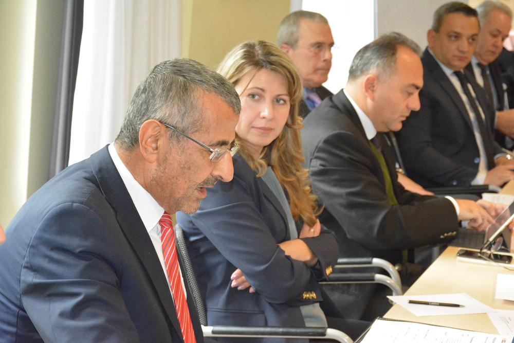 Семинар «Средиземноморье: вызовы ивозможности»